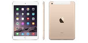 iPad mini In-Stock